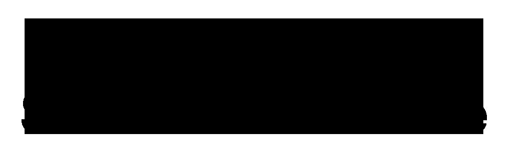 Zwaan SchaatsenService